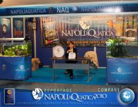 Company_NaQ