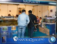 Company_Nauplia