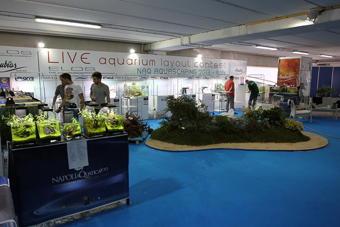 Aquascaping - foto 01