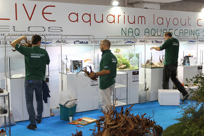 Aquascaping - foto 05