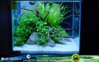 06aquascaping